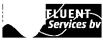 Delfluent Services